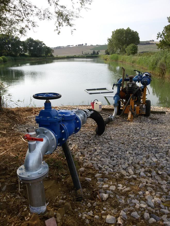 Acquafert Subirrigazione vite foto 4