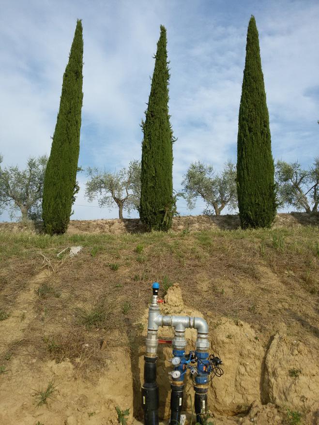 Acquafert Subirrigazione vite foto 7
